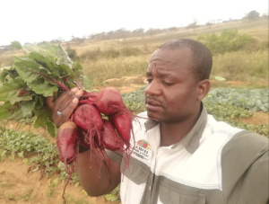 Crop farmer Bennedicter Mhlongo