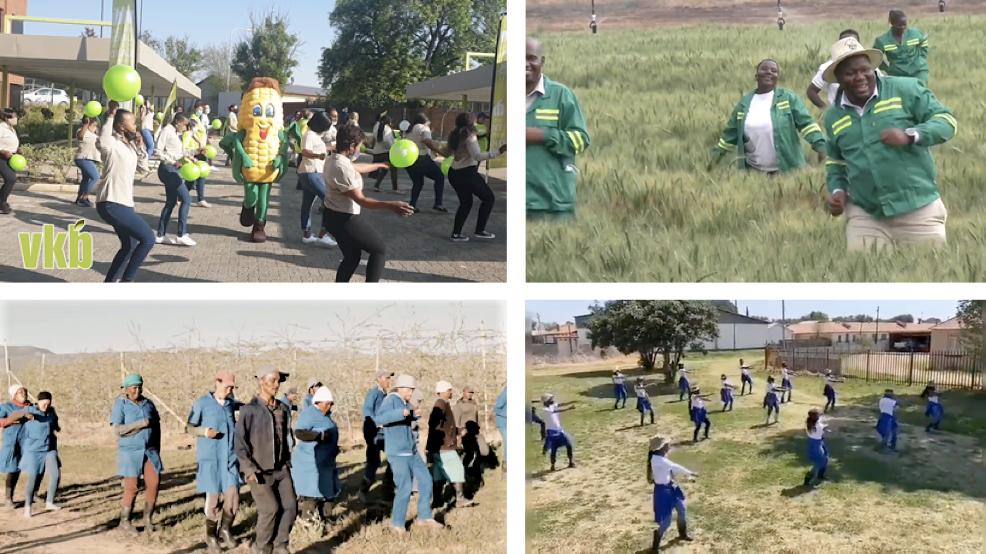 Mzansi's farmers, agriworkers and agripreneurs have heeded Pres. Cyril Ramaphosa's call to the nation to show off their dance moves to the hit song Jerusalema by Master KG. Photo: Supplied.