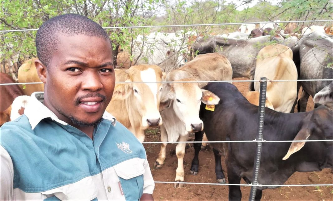 Tumisang Ben Matshogo from North West had it difficult growing up, but today he runs and owns two farming business while doing his PhD degree in animal science. Photo: Supplied.