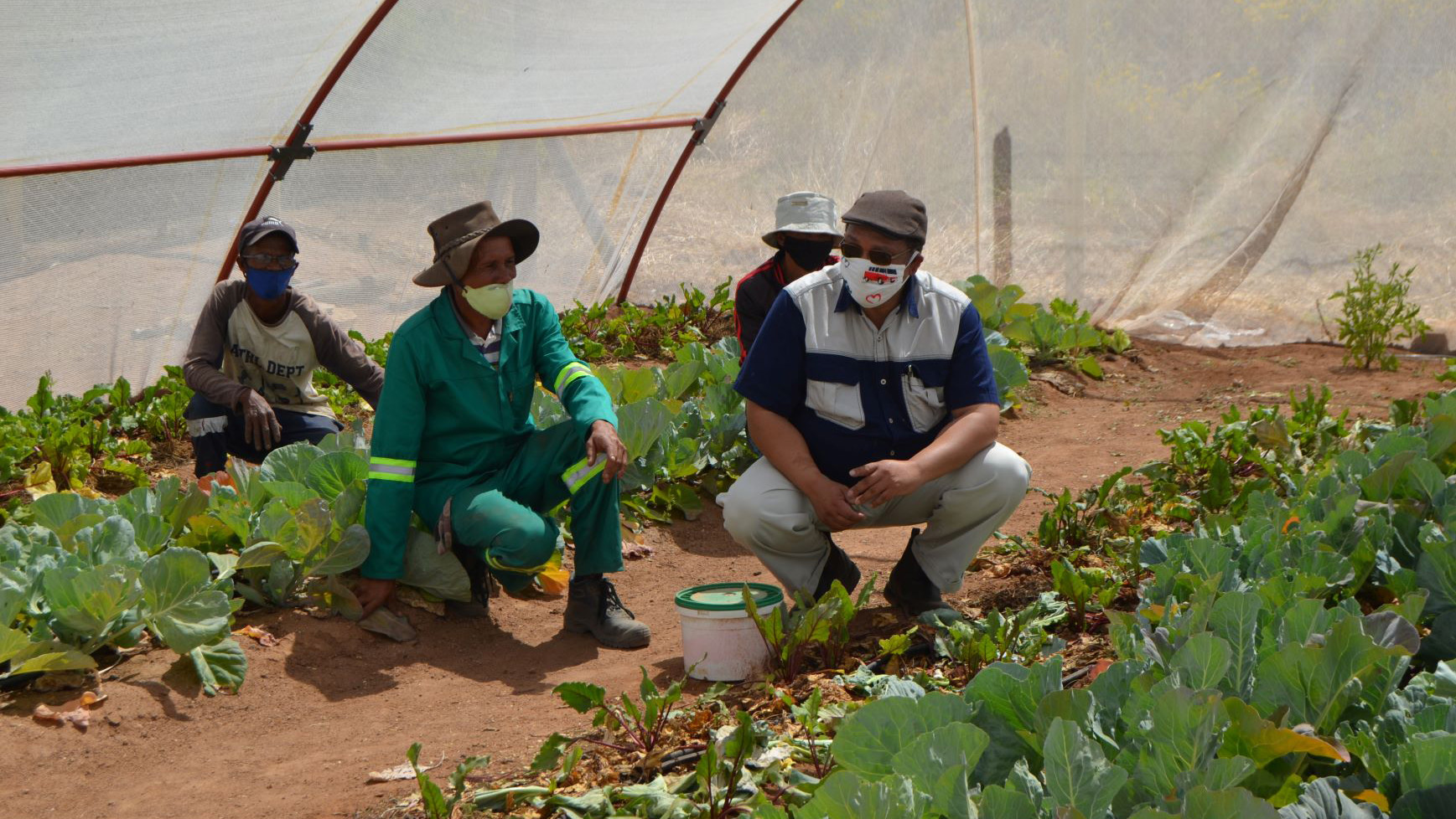 Western Cape minister of agriculture, Dr Ivan Meyer, visited several vegetable garden projects in the Namaqualand region of the Western Cape. Photo: Supplied