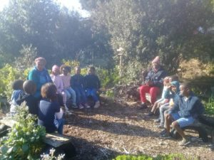backyard garden training