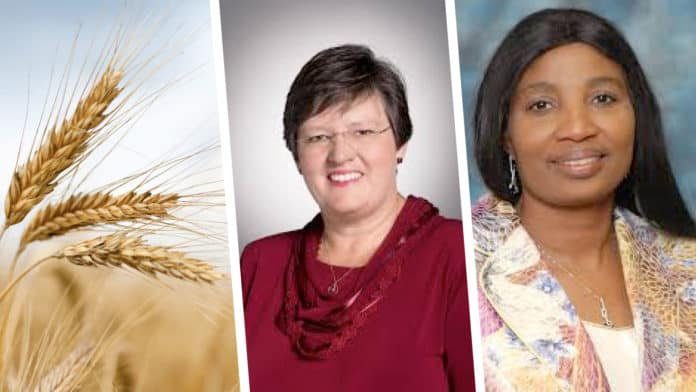 Pictured from (left to right) Sheryl Hendriks, professor in the department of agricultural economics, extension and rural development at the University of Pretoria and Tebogo Constance Modise, national council of provinces chairperson of select committee on land reform, environment, mineral resources and energy. Photo: Supplied.