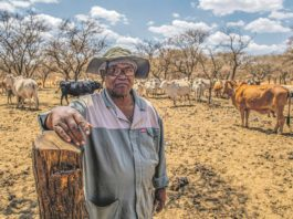 """""""How can they advertise a portion of my farm when they know very well that I got the farm from them?"""" asks David Rakgase, an 80-year-old Limpopo farmer. Photo: www.da.org.za"""
