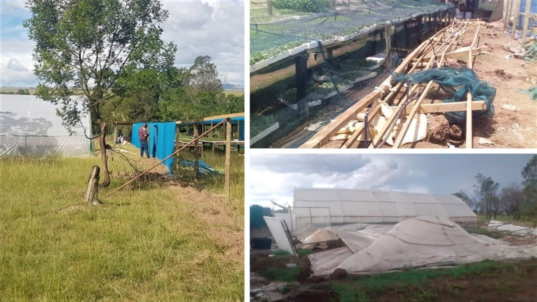 The aftermath of the devastating tornado which ripped through parts of the Eastern Cape could hold more severe consequences, agri leaders think. Photo: Supplied.