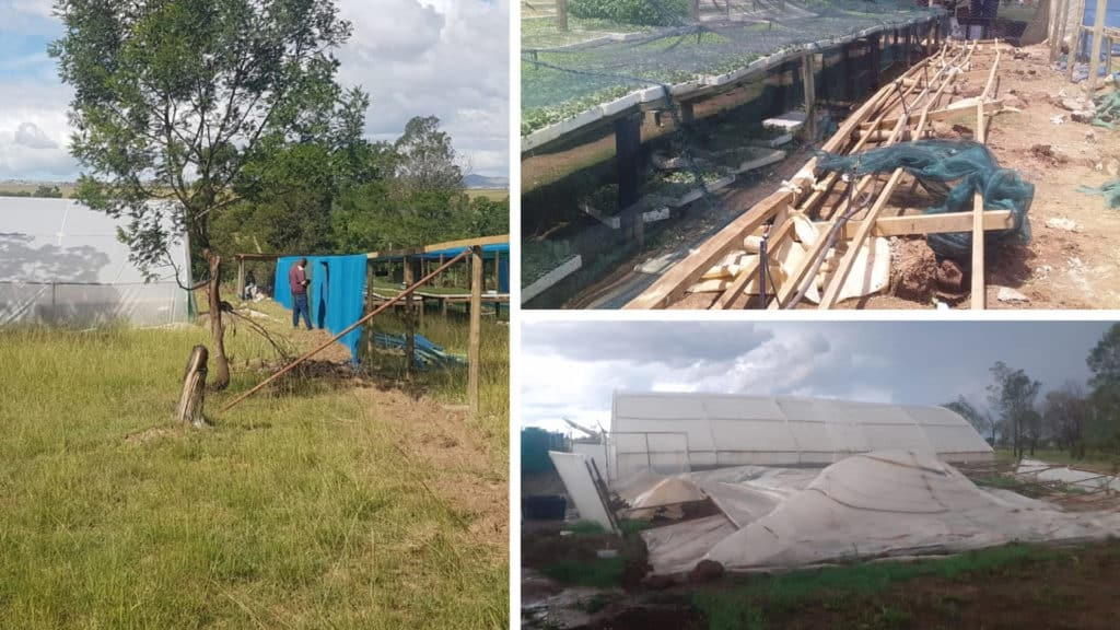 Pictured here is a before and after picture of Siphesihle Kwetana's farm. Photo: Supplied.