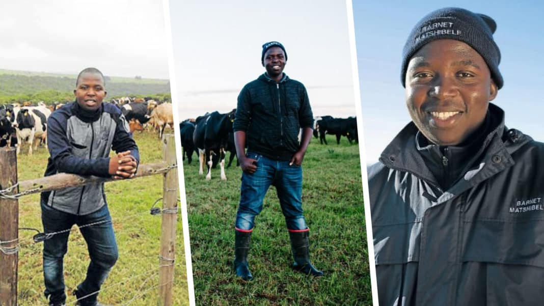 Tshilidzi Matshidzula admired by MPO Nedbank Stewardship Awards for his excellent farm management practices and attention to detail. Photo: Supplied.