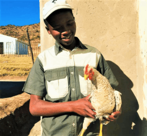Masimbonge pictured with one of his chickens.