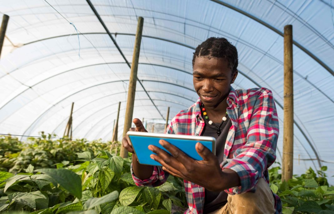 Future-focused farmers will have to embrace technology and upskill their labour force to produce food profitably, believes Dr Kobus Laubscher, a Health SQUARED economist and strategist. Photo: Getty Images