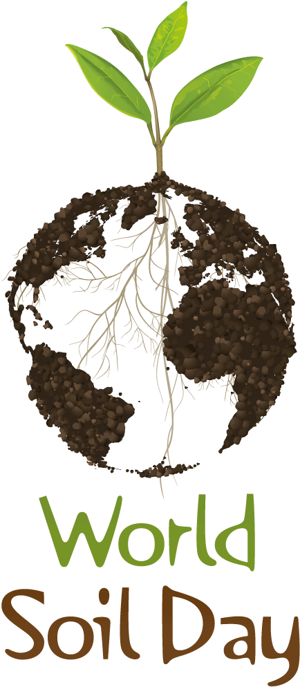 World Soil Day: 3 simple steps to boost soil health | Food ...
