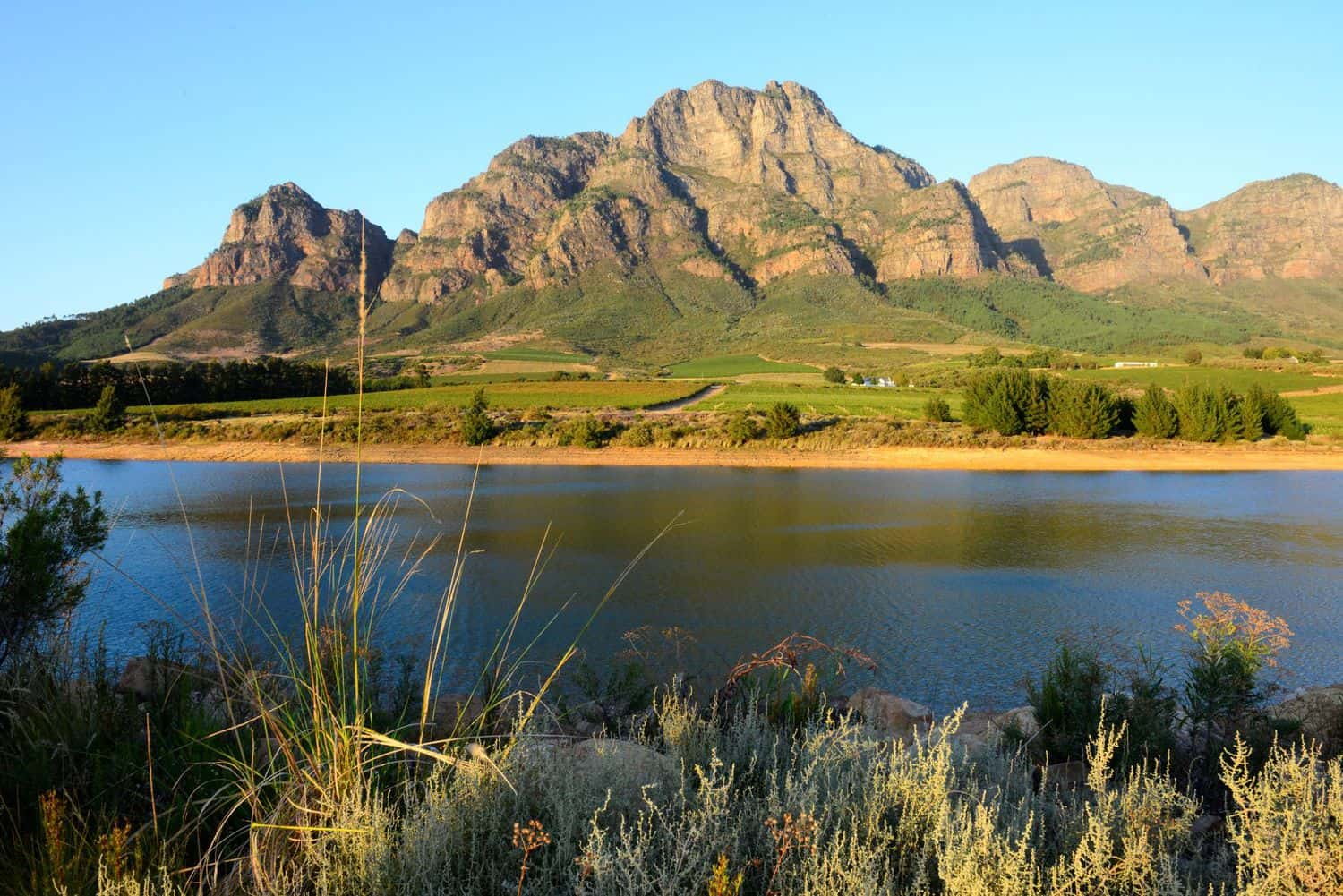 The breathtaking dam on Boschendal, part of the DGB stable. Photo: Supplied