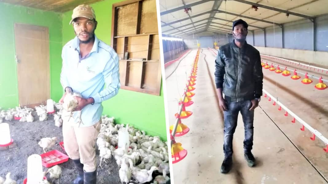 29-year-old poultry farmer, Seabi Maleka, gave his dream of being a farmer a chance and has never looked back since. Photo: Supplied.
