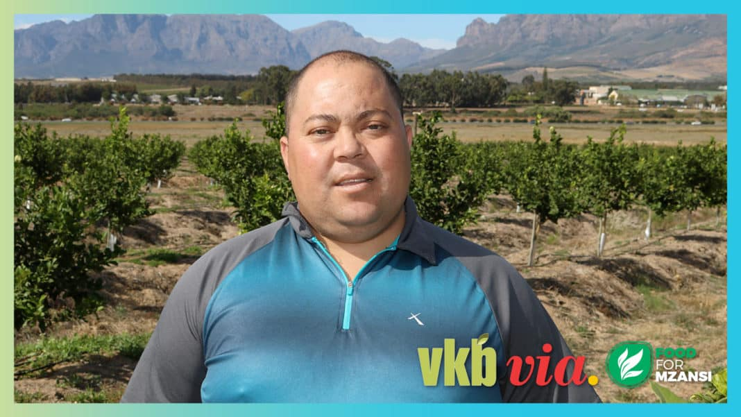 For years Wayne Mansfield worked as a fruit hawker selling grapes. Today, he is an award-wining farmer and shares his journey into agriculture on this week's episode of Vir die liefde van die land (For the love of the land). Photo: Supplied.