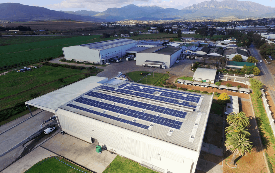 Solar panels at DGB's production plant in Wellington in the Western Cape. Photo: Supplied