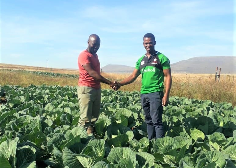 Pictured: Mzimasi and his partner, Singa on the communal land where they plant cabbage and maize. Photo: Supplied.
