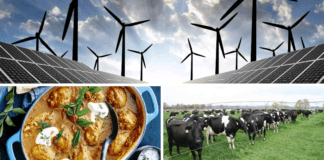 Agriculturists today join in the National Curried Chicken Day celebrations. Also, farmers from across the globe are attending webinars on pasture management for limited-resources farmers and renewable energy in agriculture. Photos: Supplied