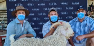 Pictured at the recent Angora Veldram auction in Jansenville in the Eastern Cape was auctioneer André van Zyl, Chris Curtain from House of Fibre and Roelfie van der Merwe, a ram breeder from Aberdeen. Photo: Supplied