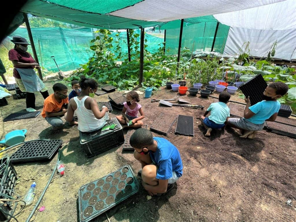 Inspire Children and Youth's primary focus is to develop rural children and youth through a variety of projects which includes gardening. Photo: Supplied/FoodForMzansi