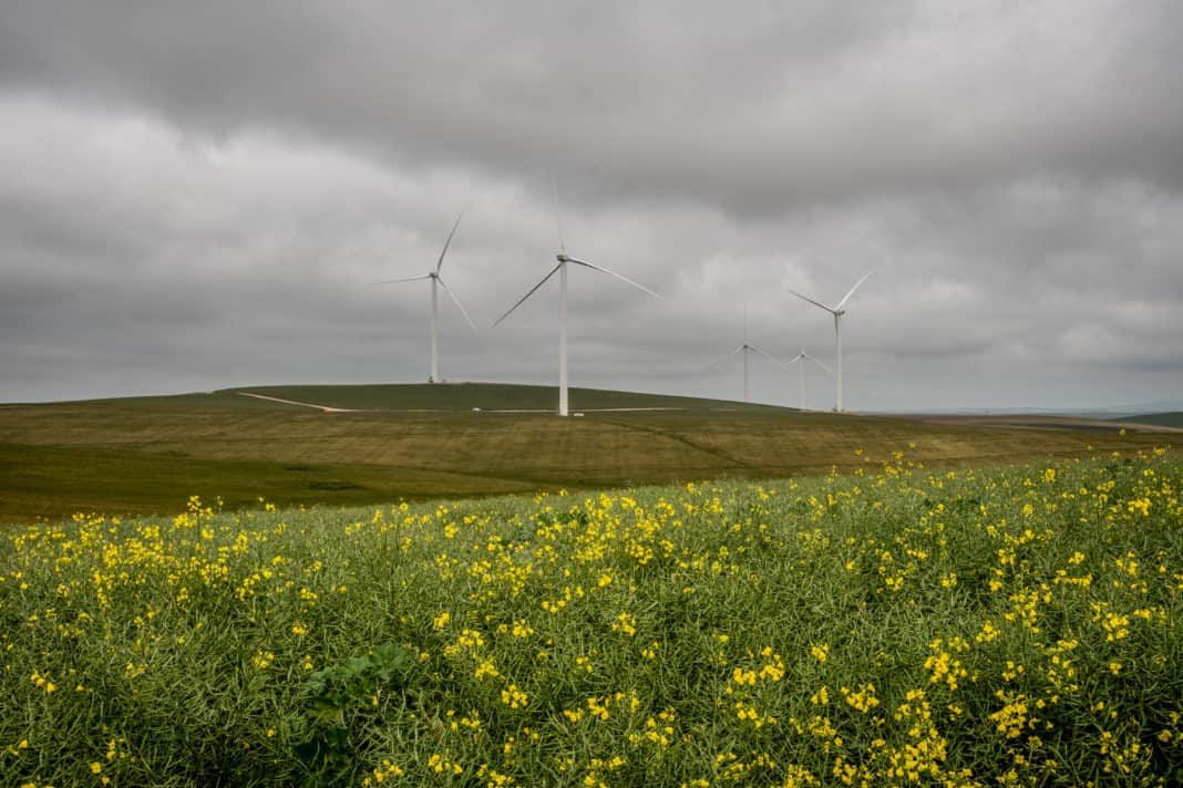 Excelsior, a brand-new wind farm in Swellendam in the Western Cape has started its operations, adding new clean power to the country's grid. Photo: Supplied