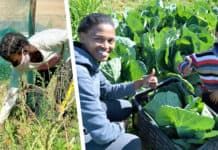 Rural farm children on Middelpos farm grow food to end hunger for themselves and 900 farm families on 42 farms. Photo: Supplied/FoodForMzansi