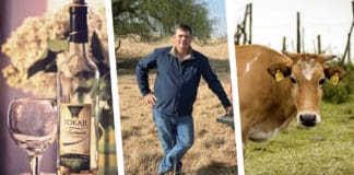 3 things happening in agri today: it's international Furmint day, watch episode 3 of Vir die liefde van die land, and it's the last day to signup for the SA Dairy Championship.