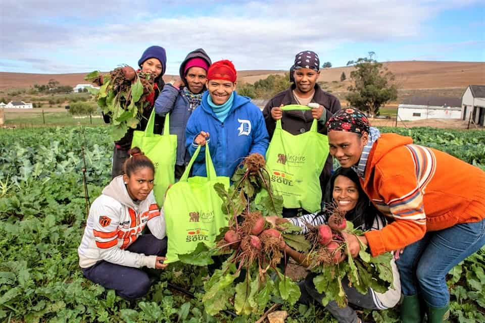 The rural women on Middelpos are cultivating vegetables which they sell in bags stitched by themselves. Photo: Supplied/FoodForMzansi