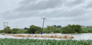 Farmers in, among others, Tweeling in the Free State are suffering severe crop and infrastructure damage following recent rains. Photo: FSA