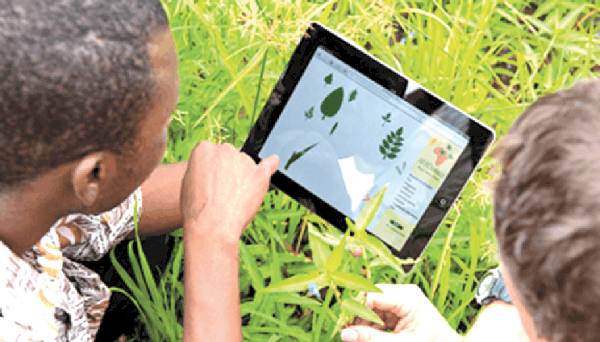 African youth are encouraged to explore technological opportunities throughout the agricultural value chain to improve livelihoods. Photo: Supplied/African Eye Report