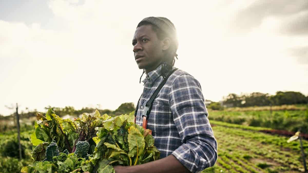 Over the past few years there's been an upsurge of young entrepreneurs who are embracing small-scale agriculture as a business and lifestyle alternative to hustling in the concrete jungle. Photo: Supplied