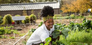 At Food For Mzansi we believe that Africa's youth should not just grow crops, but sustainable livelihoods. Up to 70% of the continent's employed youth work primarily in the agricultural sector, where they account for 65% of the workforce. Photo: Supplied/Food For Mzansi