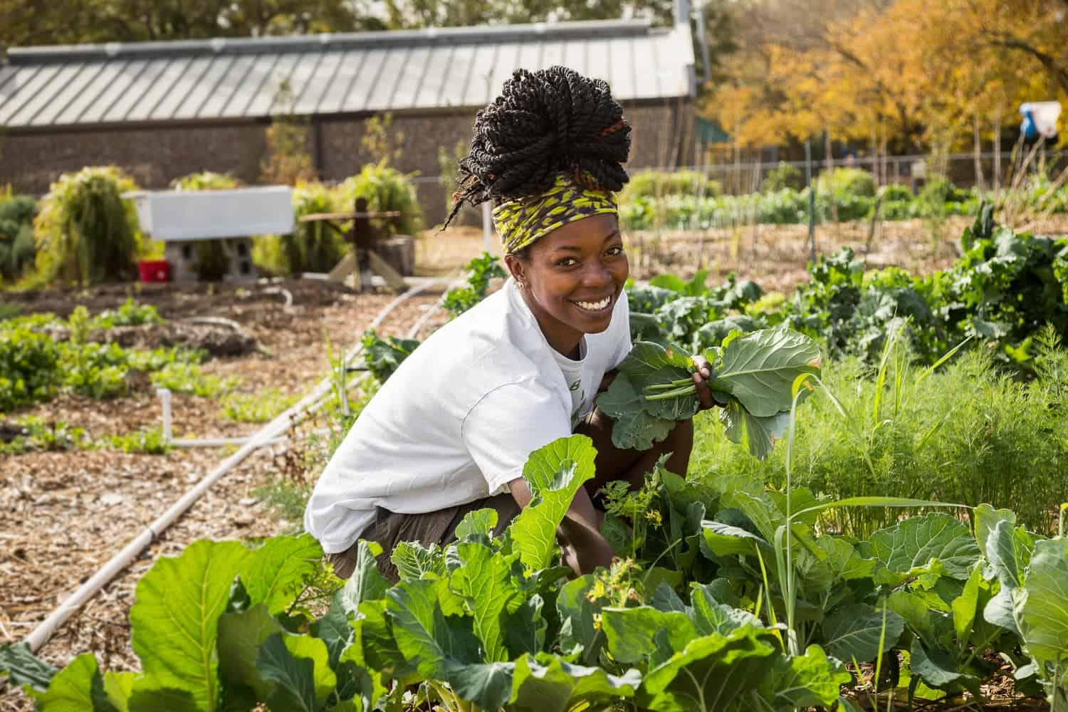 Youth Month: The sustainable future of the agriculture sector is in the hands of the young farmers, argues Aron Kole, MD of FarmSol. Photo: Supplied/Food For Mzansi