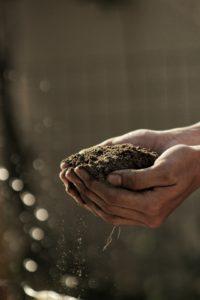 Hilling the soil
