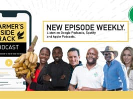 "The Farmer's Inside Track hosts are joined by Emma Naluyima, chef Lufuno ""Funi"" Sinthumule, Louw Van Reenen, Karidas Tshintsholo, Byron Booysen, Bianca Viljoen, and Uzair Essack."