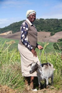 Rejoice Ncwane with one of her 30 goats on her farm along the banks of the Mtwalume River. Photo: Shukela Plus