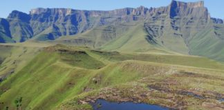 As Sub-Saharan Africa expects huge population growth, researchers are exploring the socio-ecological functioning of montane grasslands. Photo: Supplied/Food For Mzansi
