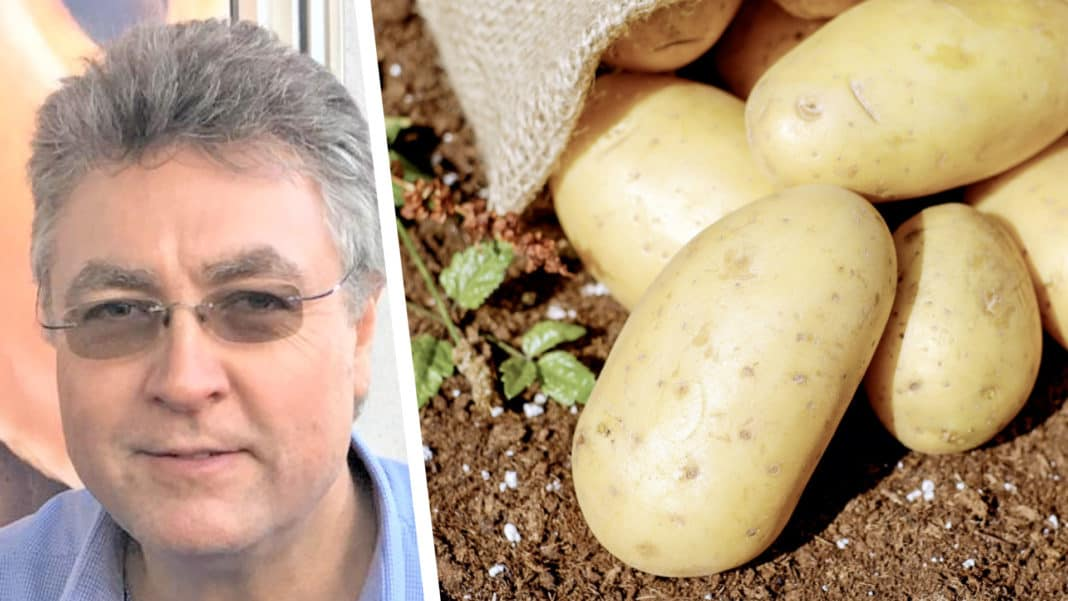 Potatoes SA says new boss, Willie Jacobs, says lack of reliable information and the linking of information on both sides of the sales transaction, are both the biggest threat and opportunity currently within our industry. Photo: Supplied/FoodForMzansi