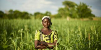 Gender inequality slows agricultural development, found a global study. Photo: Supplied/Food For Mzansi