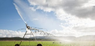 President Cyril Ramaphosa said government will prioritise steps to ensure that water licence applications are finalised within 90 days after being lodged. Photo: Supplied/Food For Mzansi