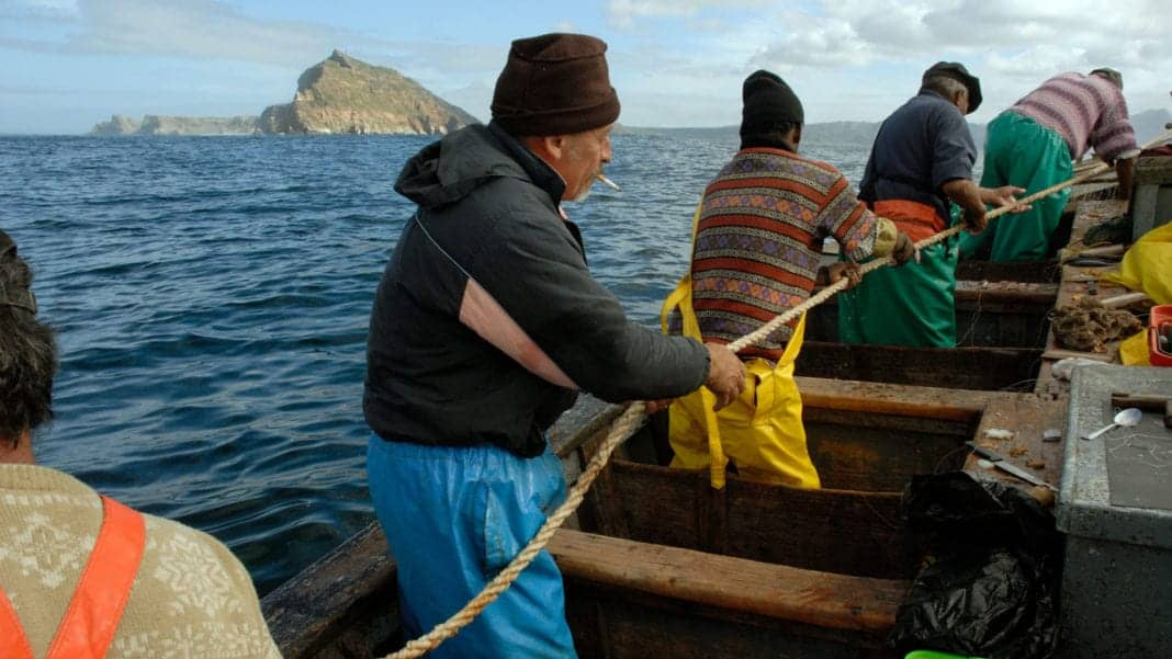 In 2019, the small-scale fishing sector contributed more than R3 billion to South Africa's GDP. Photo: Rodger Bosch/Brand SA
