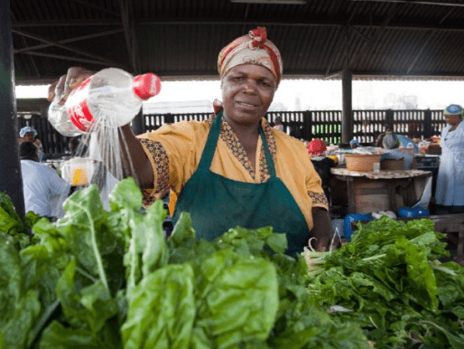 In an effort to keep farming, Thulani sold low-cost crops, such as spinach and cabbage, to street traders. Photo: Supplied/A. Buckland