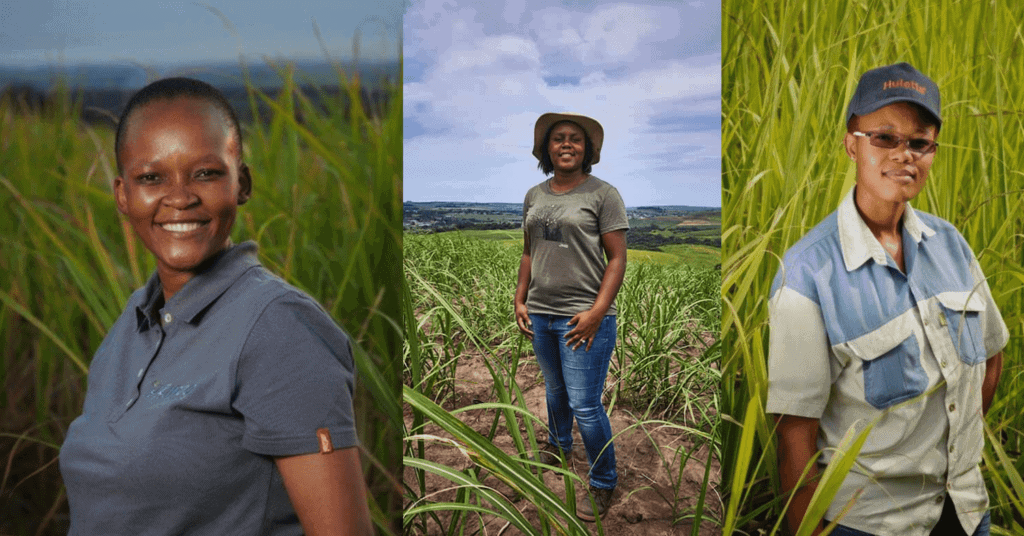 While sugarcane production is growing across the continent, South Africa's sugarcane value chain master plan has also been signed off. This is set to revive the waning industry and empower more local sugarcane farmers. Photos: Supplied/Food For Mzansi