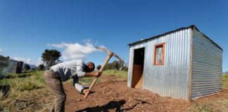 A man builds an illegally erected shack during a land invasion on the property of Louiesenhof Wine farm in the heart of the major wine producing region of Stellenbosch. Photo: Supplied/EPA