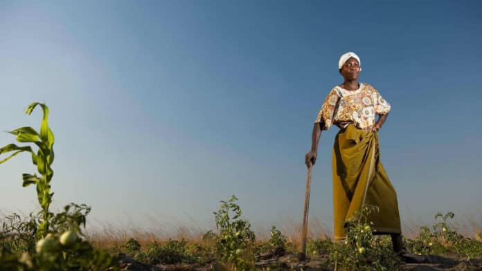 Women play important and varied roles in agriculture, but they still don't have equal opportunities when compared to men. Photo: Supplied/Food For Mzansi