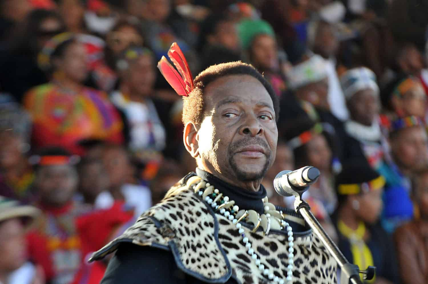 King Zwelithini: The memory of King Goodwill Zwelithini KaBhekuzulu will be ingrained on the heart of farmers forever, says Mzansi's agricultural sector. He was a farmer in his own right and dedicated to rural development. Zwelithini has ruled over the Zulu nation since his coronation on 3 December 1971. Photo: Gallo Images/Daily Sun/Jabulani Langa