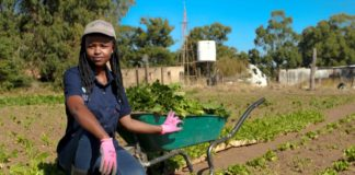 Njabulo Mbokane won the 2019 SAB-FarmSol Young Emerging Farmer of the Year title. She is one of many farmers across Mzansi supported by FarmSol. Photo: Twitter