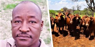 Successful commercial livestock farmer and mentor Duncan Serapelwane