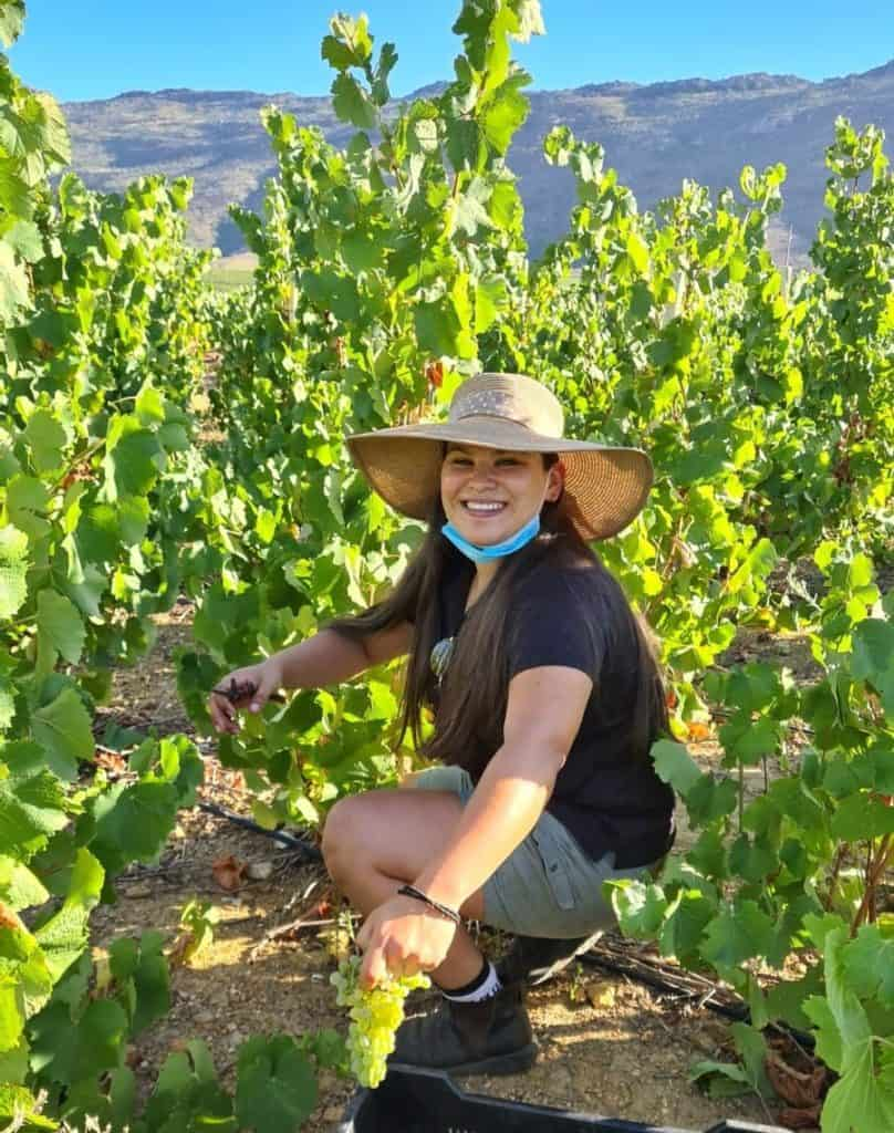 SIYABONGA Day: Kelsey Shungking has been a protégé of the Cape Winemakers Guild for the past three years. Photo: Supplied/Food For Mzansi