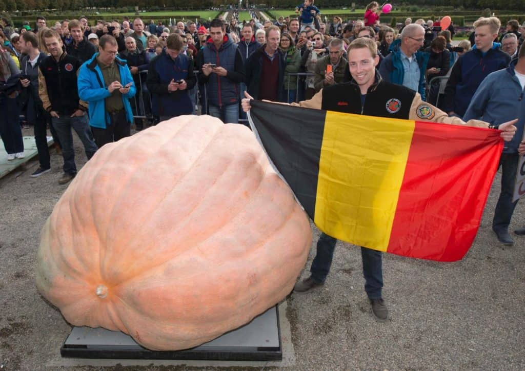 In 2016, Belgian Mathias Willemijns  set the world record with his pumpkin weighing a hefty 1 190.49kg. Willemijns claimed the record at the Giant Pumpkin European Championship in Ludwigsburg, Germany. Photo: Supplied/Food For Mzansi
