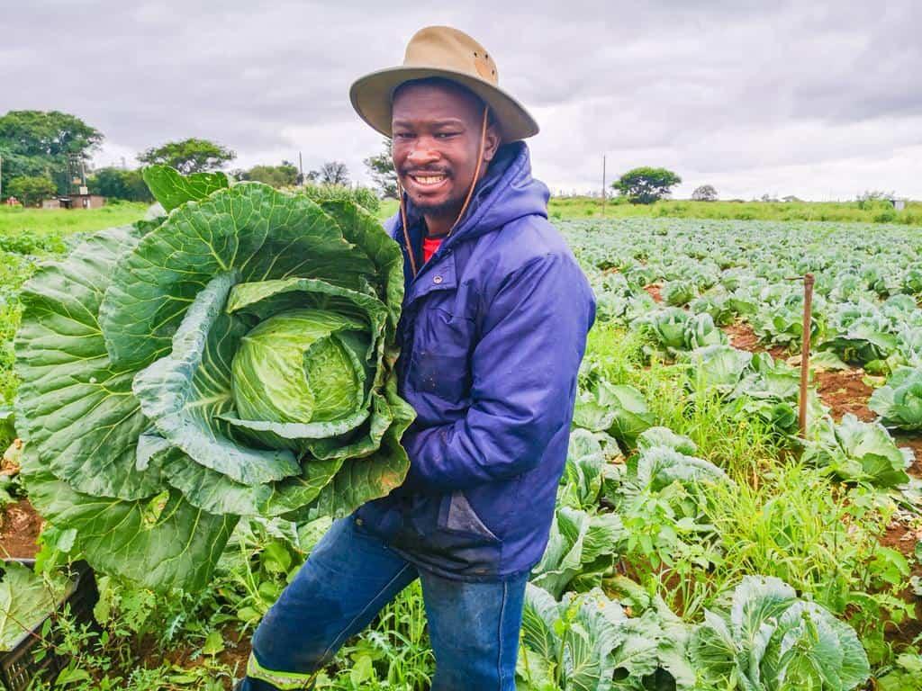 Market less important than quality, says Pfananai Augustine Nemasisi