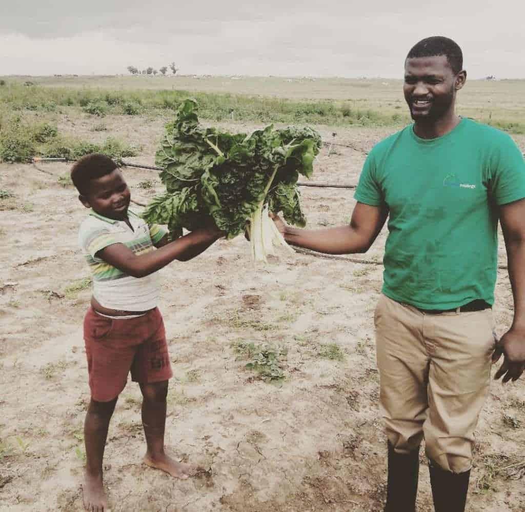 Inga Qeja farming business from Covid-19 disaster