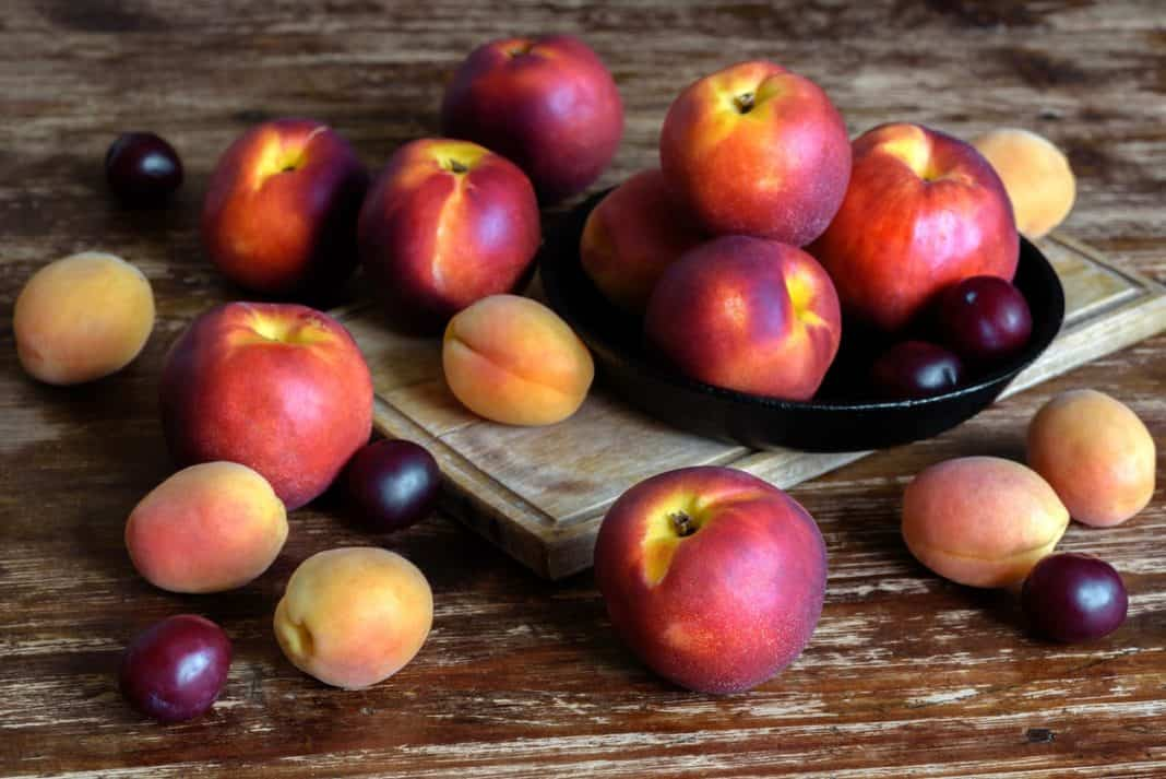 British online and in-store shoppers are simply loving Mzansi's delicious stone fruit which is now available in many leading UK retailers. Photo: Supplied/Food For Mzansi